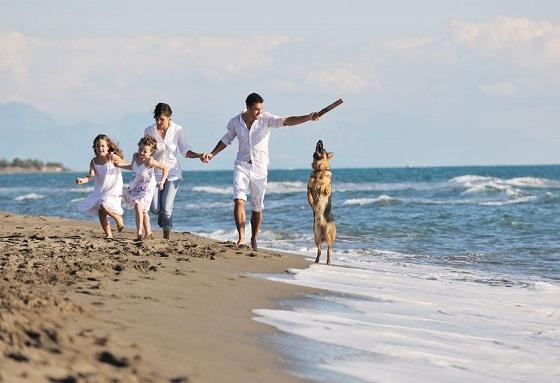 Solo Affitti Vacanze - case vacanze pet friendly  a prezzi convenienti 3