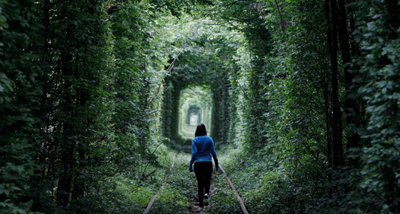 Tunnel-of-Love-