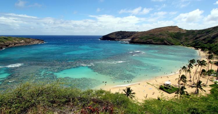 6-Hawai-Prayitno