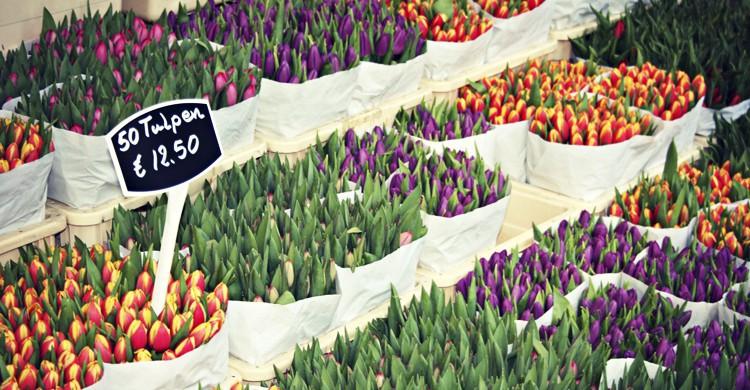 Mercado-de-Flores-Meg-Marks-Flickr