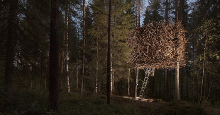 Tree-Hotel-750x393