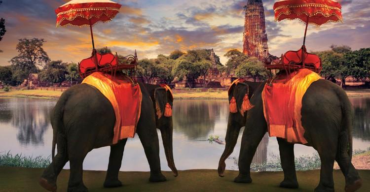 elefantes-en-ayuthaya